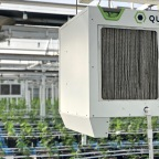 Why You Need a Reliable Dehumidifier for Growing Marijuana